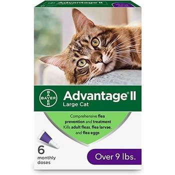 Bayer Advantage Cat 4-8kg 1Kom, Ampula SpotOn za mačke protiv buva