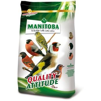 Manitoba Cardelino premium - Hrana za divlje ptice (štiglići, ptice pevačice) 15kg