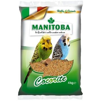 Manitoba Cocorite - Hrana za tigrice 1kg